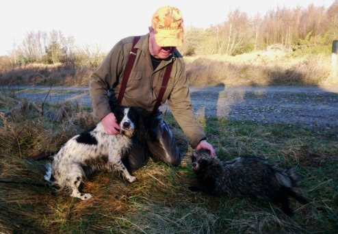 Erik Voerså Nielsen og hunden Foxy med mårhund skudt ved Kjul. Foto (arkiv): Steen Lund.