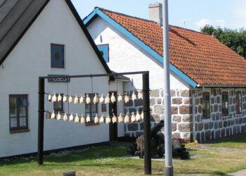 Museum Hirtshals FlaskePosten 2 740x416