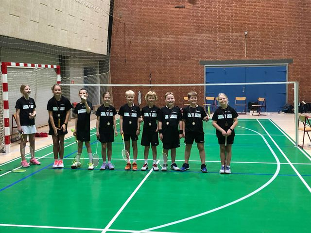 BMI Badminton 8
