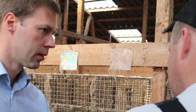 Virksomhedsrådgiver Kennet Rønfeldt, som er en del af LandboNords særlige specialistgruppe for mink.